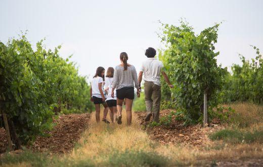 Tecnovino Ruta del Vino Ribera del Duero