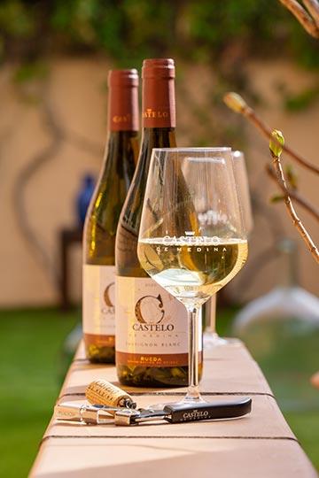 Tecnovino vinos jovenes de Castelo de Medina Sauvignon Blanc