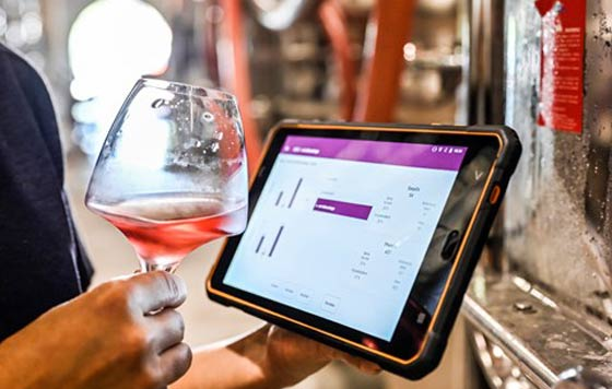 Tecnovino mejorar la calidad del vino Wine Quality Solutions Vinventions