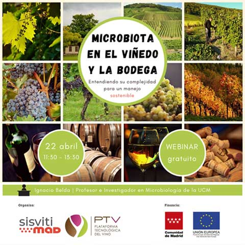 Tecnovino microbiota en el viñedo y la bodega PTV Sisvitimad
