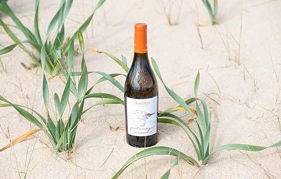 Tecnovino Patinegro vino ecologico Bodegas Barbadillo detalle