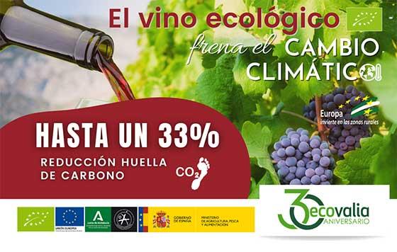 Tecnovino producción ecológica de vino en Andalucía Ecovalia detalle