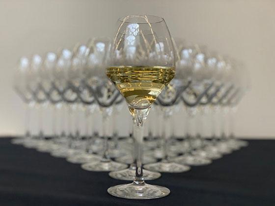 Tecnovino vinos blancos Le Mondial des Vins Blancs Strasbourg