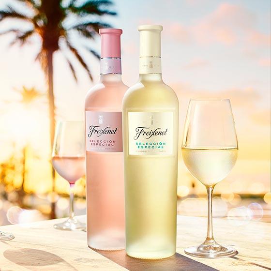 Tecnovino Coleccion de Vinos Freixenet