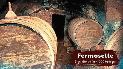 Tecnovino Fermoselle Villa del Vino bodegas