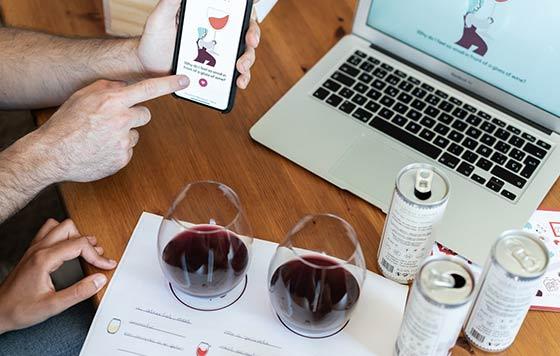 Tecnovino catas online de vino Wine Aspects detalle