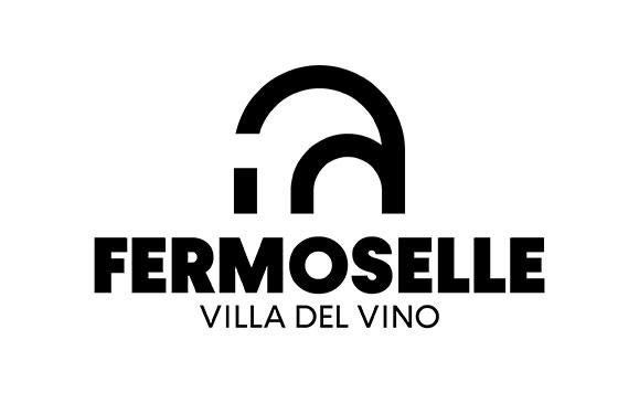 Tecnovino logo Fermoselle Villa del Vino detalle