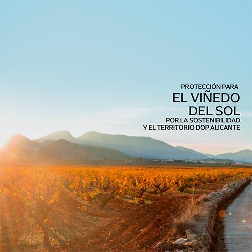 Tecnovino protección del viñedo DOP Alicante manifiesto