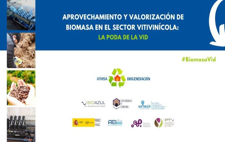 Tecnovino residuos de poda de la vid biomasa Athisa PTV detalle