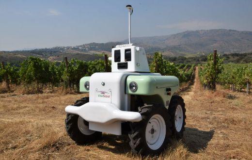 Tecnovino robot de observación vitícola