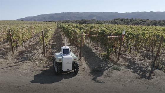 Tecnovino robot agrÍcola VineScout viñedo 1
