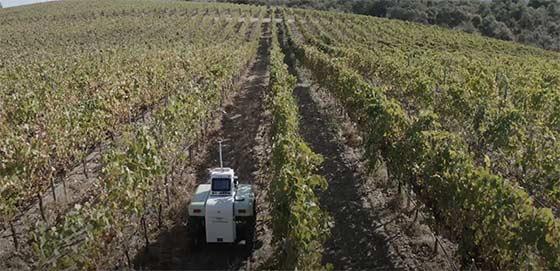 Tecnovino robot agrÍcola VineScout viñedo 2