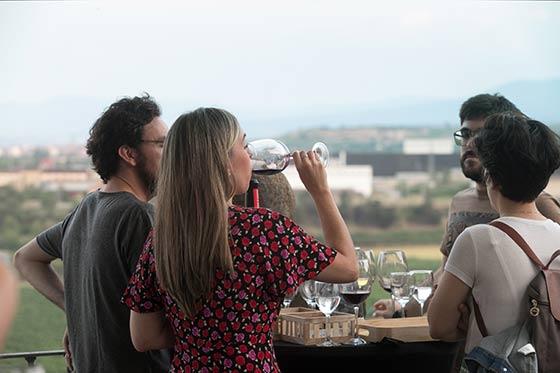 Tecnovino Encuentro Enogastronómico Ruta del Vino de Rioja Alavesa 1