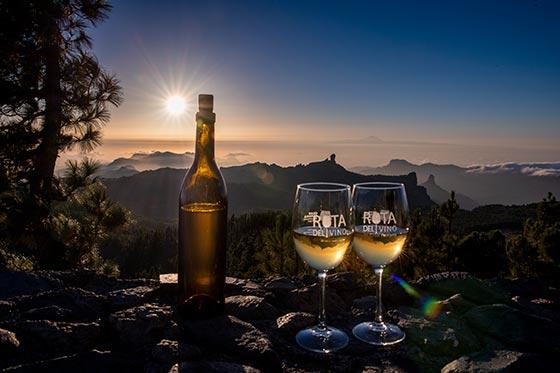 Tecnovino Ruta del Vino de Gran Canaria 1