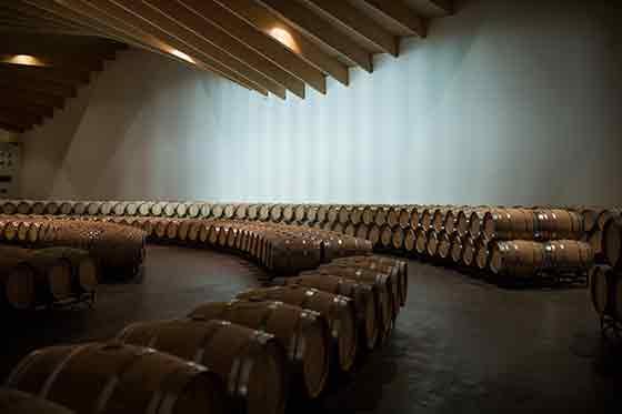 Tecnovino Ysios vinos barricas
