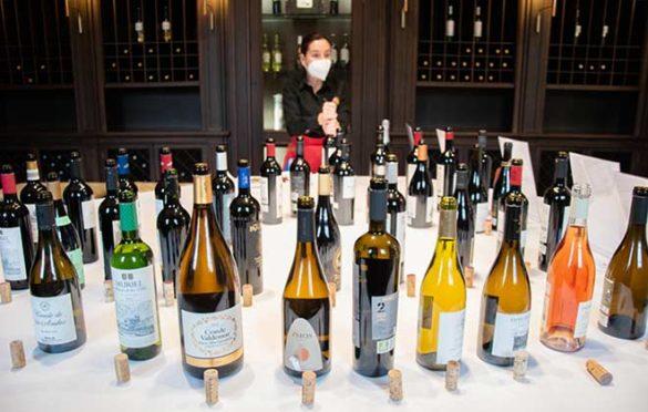 Tecnovino vinos de las bodegas de Grupo Rioja cata detalle