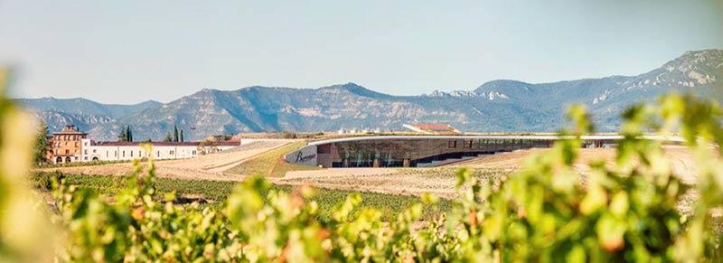 Tecnovino Bodegas Beronia instalaciones La Rioja