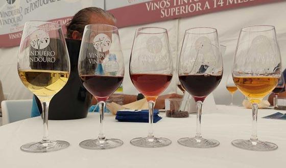 Tecnovino Premios VinDuero-VinDouro cata