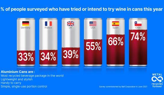 Tecnovino resultado consumo vino en lata encuesta Ball