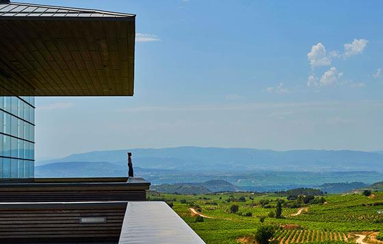 Tecnovino vacaciones en Rioja detalle 1
