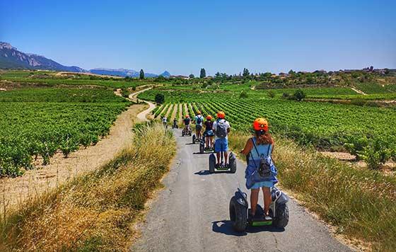 Tecnovino vacaciones en Rioja detalle 2