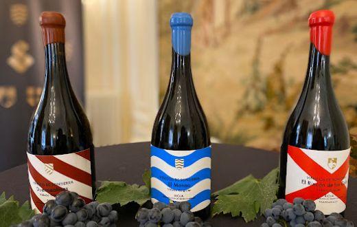 Tecnovino nuevos vinos singulares de Bodegas Sonsierra
