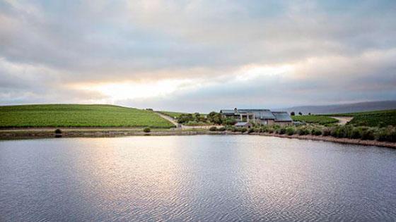 Tecnovino Creation mejores viñedos del mundo de 2021