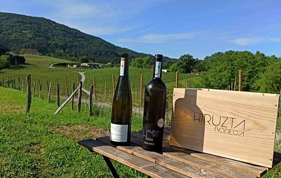 Tecnovino Hiruzta Bodega exterior y vinos detalle