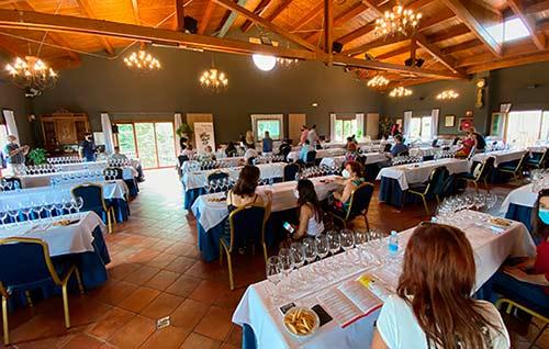 Tecnovino Villa Lucia Wine Fest vinos de Rioja detalle
