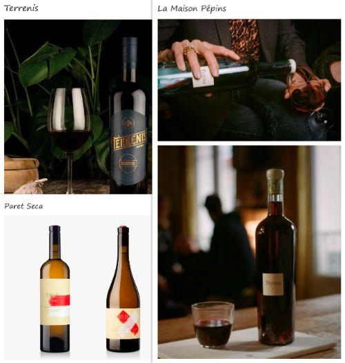Tecnovino vinos con botellas Wild Glass