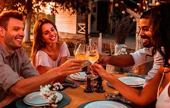 Tecnovino consumo de vino en España Oive