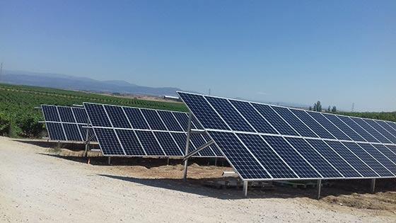 Tecnovino Gonzalez Byass parques solares Finca Constancia