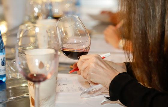Tecnovino I Concurso de Vinos del Mediterráneo